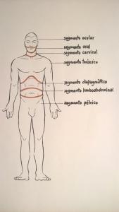 Homo Simetric-sg ocre (4)