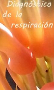 diagnóstico de la respiración2