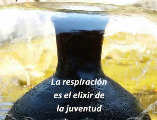 (Español) La respiración es tu compañera inseparable, es la madre de las medicinas