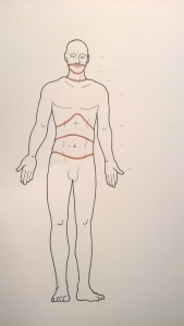 homo segments vidal